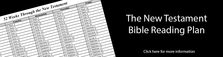 52 Week NT Bible PlanWeb 1351×350